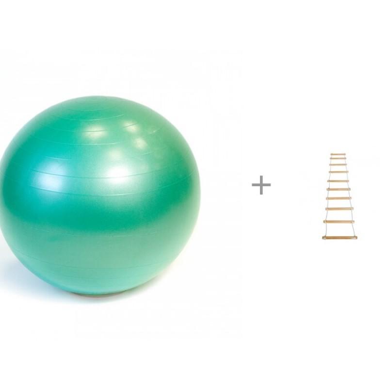 Gymnic Plus Мяч гимнастический Фитбол 65 см и Лестница веревочная КМС